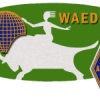 WAEDC RTTY 2020 - Claimed score
